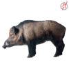 Wildschwein 5