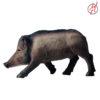 junges Wildschwein 2